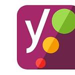 Yoast Seo: your next plugin